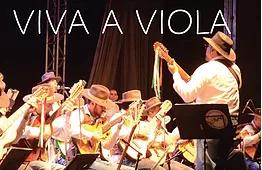 Viva a Viola